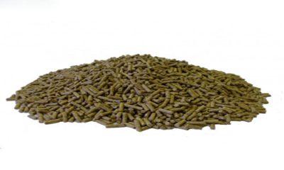 غذای ماهی کپور معمولی