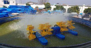 هواده پدل ویل ایرانی